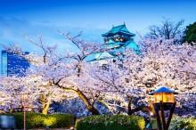 Пролет в Япония (5)