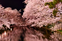 Пролет в Япония (8)