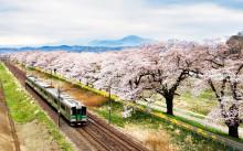 Пролет в Япония (9)