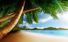 Карибите (13)