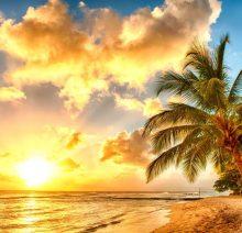 Хаваи - мечтаната екзотика14