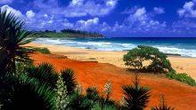 Хаваи - мечтаната екзотика10