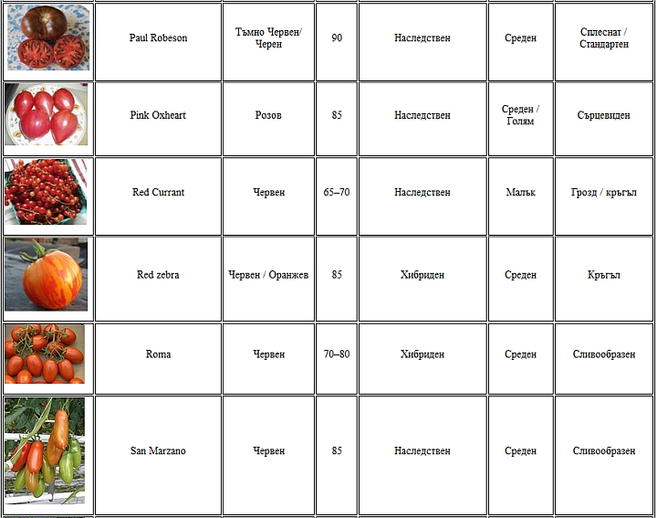 Разни сортове домати