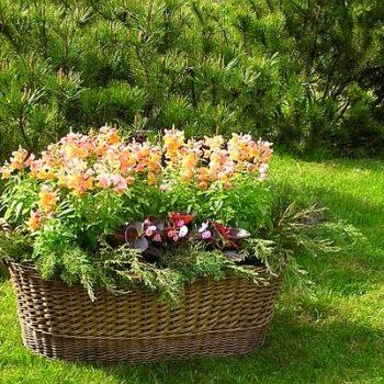 Озеленяване на градини – кошници с цветя